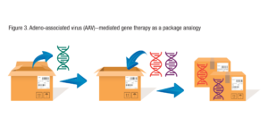 The image shows that AAV DNA can be removed from a shipping box, and a human gene can take its place. The shipping label on the outside of the box remains the same.